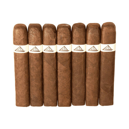 Doc Petit Robusto, , seriouscigars