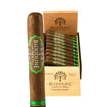 Brewnette Robusto, , seriouscigars